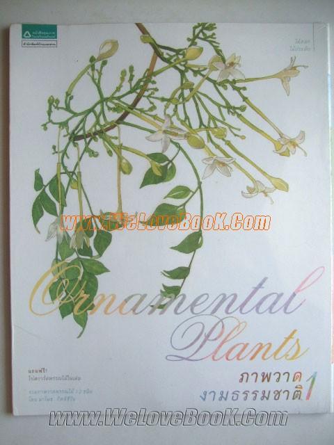 ภาพวาดงามธรรมชาติ-:-Ornamental-Plants-1