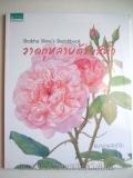 Shabha Shine' s Sketchbook : �Ҵ����Һ�����չ��